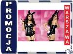 OBSESSIVE Bunny gorset kostium SEXI KRÓLICZEK